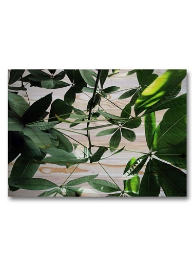 Woodesk Doğal Ağaç 60x40 cm Masif Tablo Renkli
